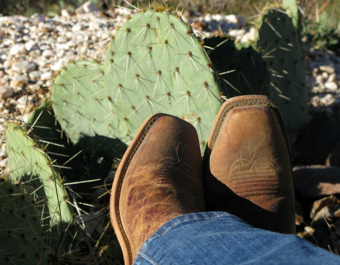 Boots and cactus