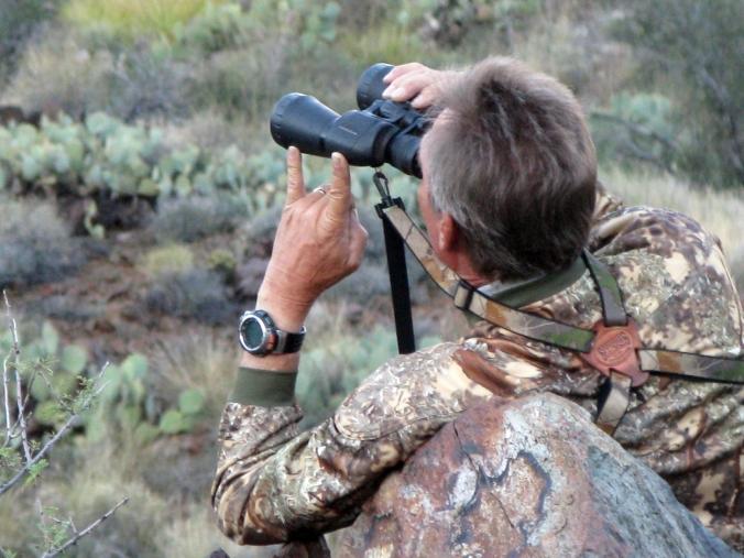 Deer Hunt Glassing