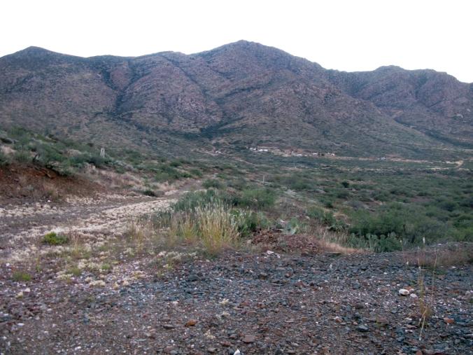 The Hunt and Desert Mountain Range