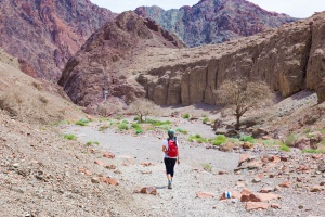 Woman backpacker hiking desert canyon.